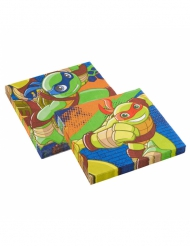 Ninja Turtles™-lautasliinat 20 kpl