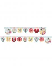 Disney Princesses™ Happy Birthday-köynnös 200 x 16 cm