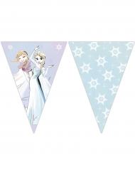 Frozen™ -lippusiima 2,3 m