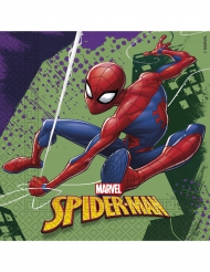 Spider-man™-lautasliinat 20 kpl