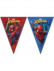 Spiderman™- viiriköynnös 2,3 m x 25 cm