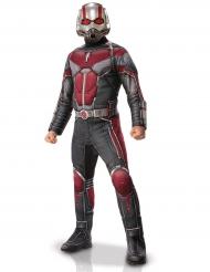 Ant-Man™-naamiaisasu aikuiselle luksus