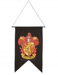 Rohkelikon™ lippu