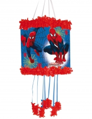 Spiderman™ -pinjata 20 x 30 cm