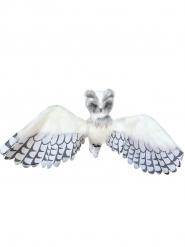 Valkoinen pöllö 1 m