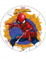 Spiderman™-kakkukuva 18,5 cm