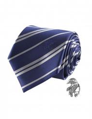 Harry Potter™ Korpinkynsi-kravatti ja pinssi