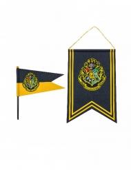 Harry Potter™ Tylypahka viiri ja lippu