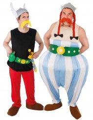 Asterix ja Obelix- pariasu aikuisille