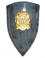 Muovinen harmaa/kultainen kilpi 75x45 cm