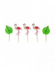 Flamingokynttilät 5,5 cm 5 kpl