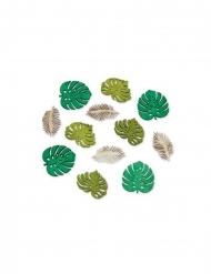 Puiset trooppiset lehdet 12 kpl 4 cm