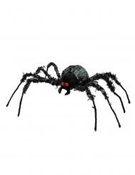 Jättimäinen hämähäkki 43x46 cm
