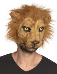 Leijonanaamari aikuiselle