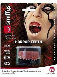 Loisen hampaat aikuiselle