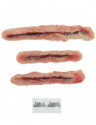 Kolme lateksista kynsihaavaproteesia