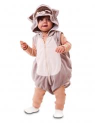 Pesukarhuasu vauvalle