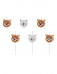 Pieni karhu- synttärikynttilät 3 cm 6 kpl