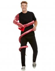 Käärmeasu aikuiselle