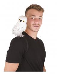 Valkoinen noidan pöllö