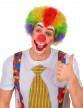 Perruque afro/ clown multicolore standard adulte-1