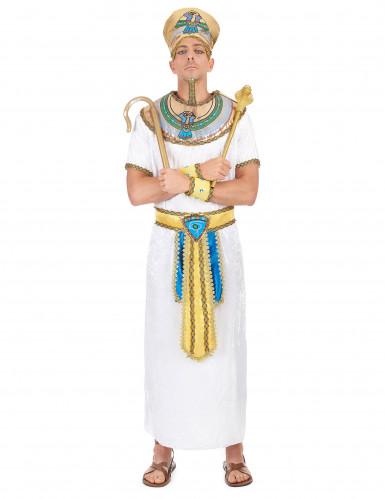 Egyptin kuninkaan asu