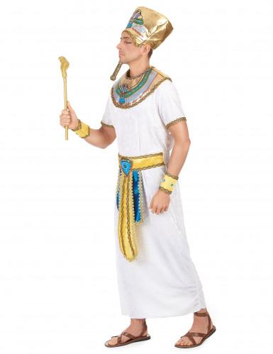 Egyptin kuninkaan asu-1