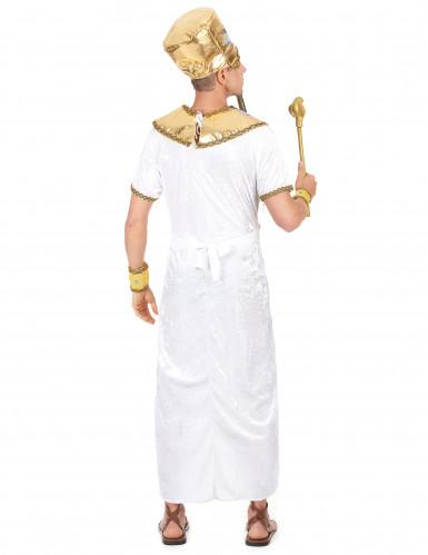 Egyptin kuninkaan asu-2