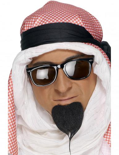 Aikuisten tekoparta, Arabiprinssi