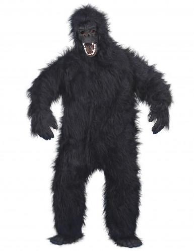 Gorilla-asu aikuisille