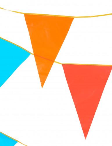 Värikäs lippunauha 10 m, isot liput-1