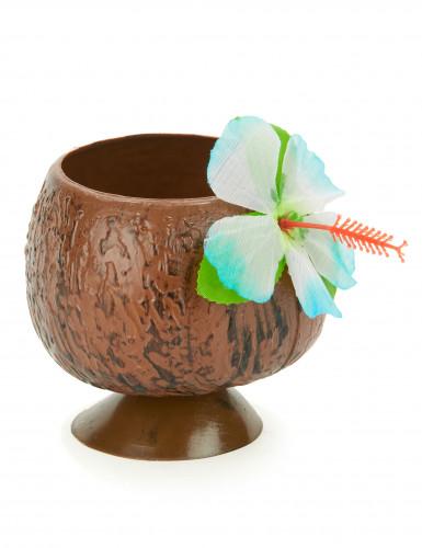Havaiji-pikari, kookospähkinä