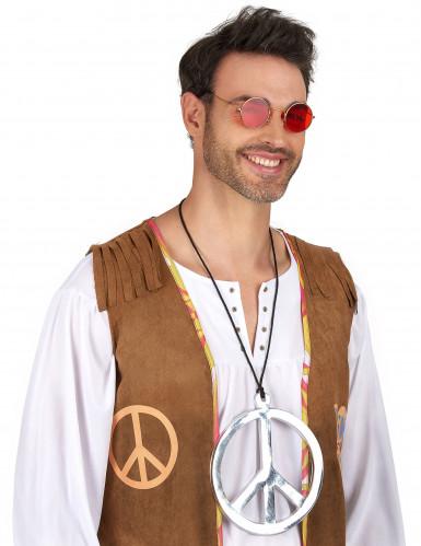 Hopeanvärinen hippikoru-1