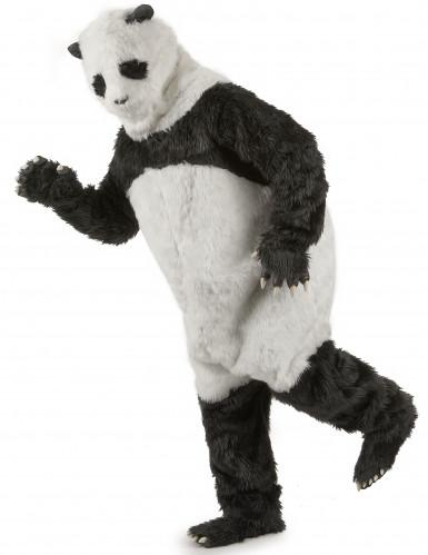 Aikuisten panda- asu-1