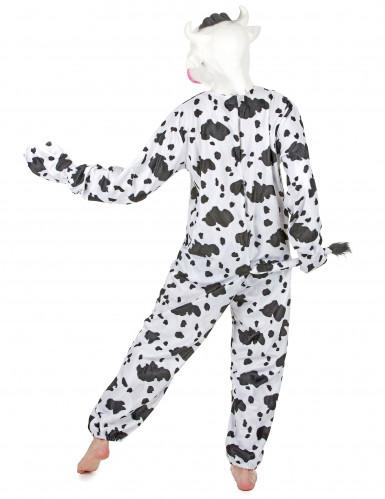 Lehmäasu aikuiselle-2
