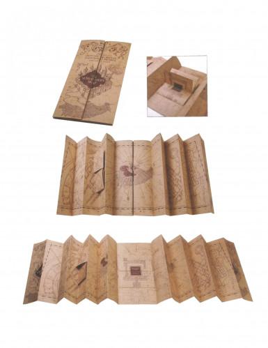 Harry Potter Kelmien Kartta Tilaa Koristeet Vegaoo Fi Lta