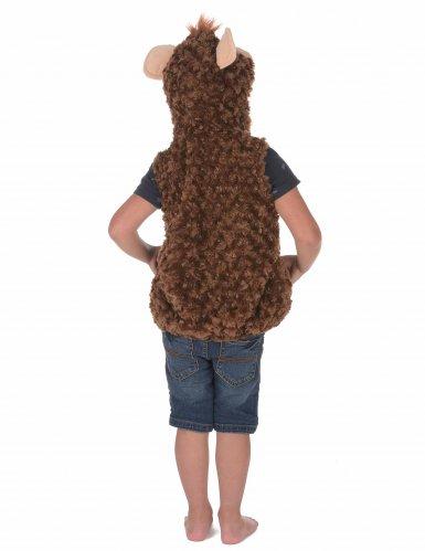 Apina-naamiaisasu lapselle-3