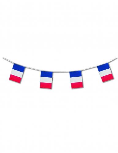 Ranskan lippu -lippusiima 5 m