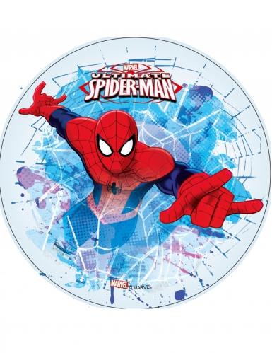 Ultimate Spider-man™ - Kakkukuva jääsinisellä taustalla 21 cm