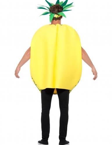 Ananasasu aikuiselle-1