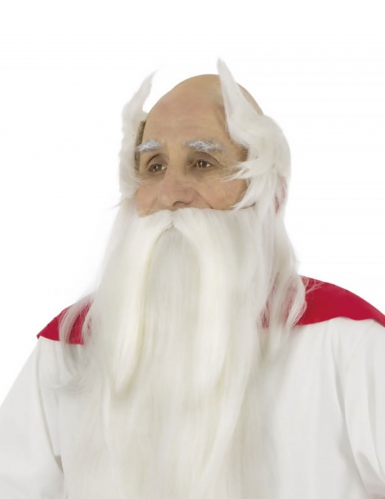 Asterix & Obelix™ - Akvavitixen peruukki ja parta