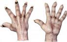 Hirviön kädet aikuisille