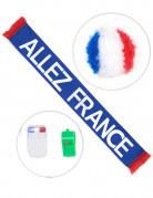 Ranskan fanisetti